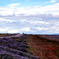 Islanda: come pianificare l'itinerario
