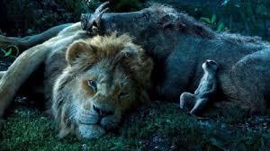 il re leone timone e pumba
